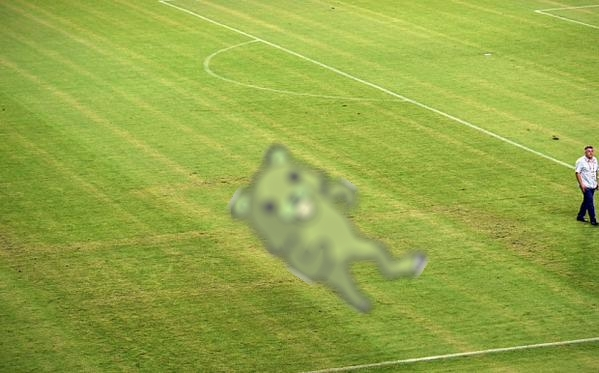 The Pedobear marking was clearly visible during the game.